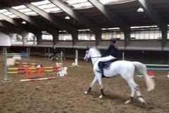SPRING HORSE SHOW 2017_16