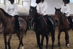 SPRING HORSE SHOW 2017_9
