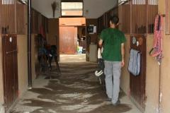 La-staffacusago-ATTIVITA'-07