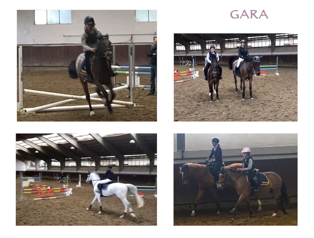 SPRING HORSE SHOW 20173