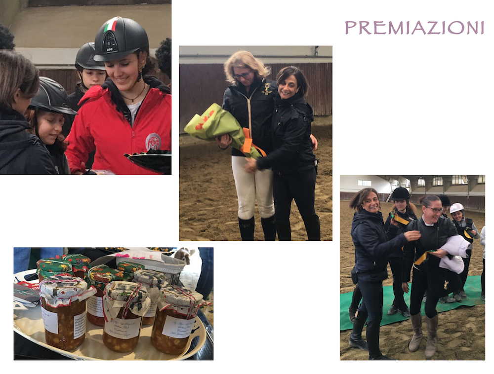 SPRING HORSE SHOW 20175